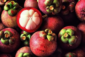 Best Tropical Fruits to Try in Vietnam