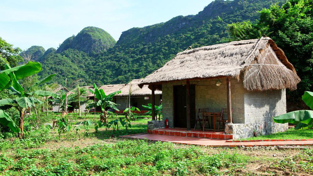 Whisper Nature Bungalows
