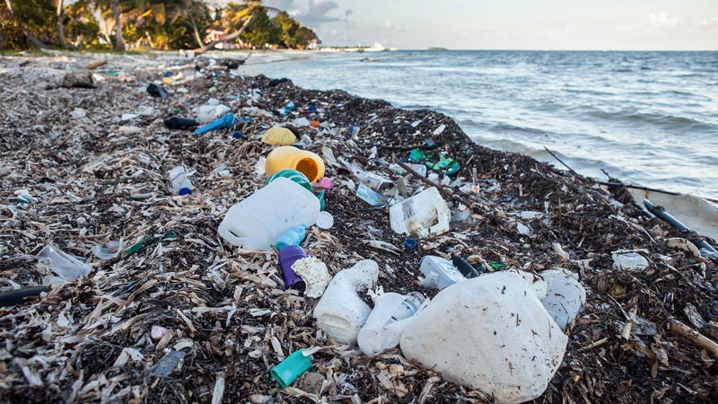 Trash Vortex The Pacific Ocean Is Explained In This Article Learn About