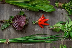 A Guide to Vietnamese Herbs