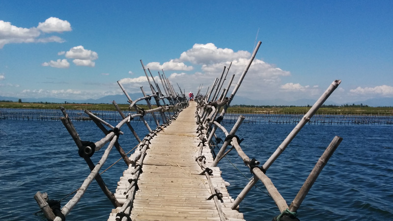 The bamboo bridge built by the bridge builder, Thanh.